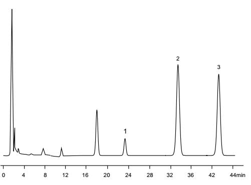 Columnas de HPLC de SiO2